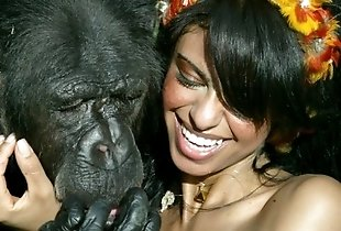 Cute brunette with a huge gorilla